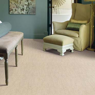 Caress Carpet by Shaw | Broadview, IL